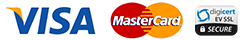 Visa master logo